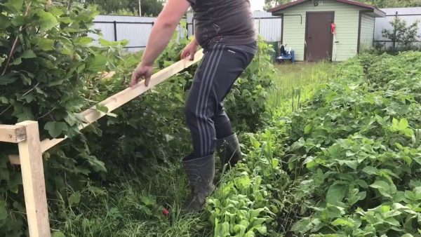 Создаем подпорки для смородины