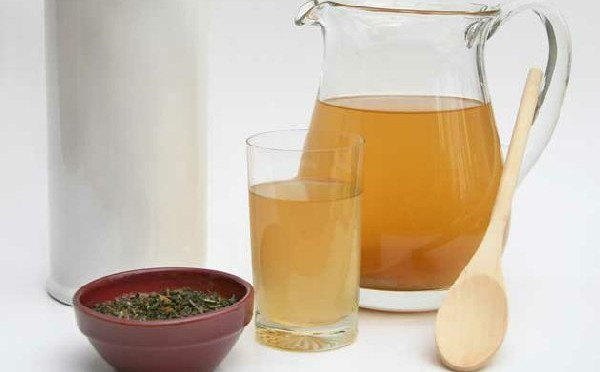 Как создать чайный гриб с нуля