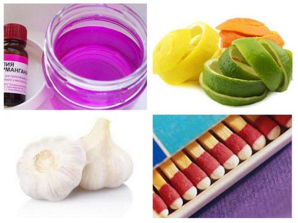 Как избавиться от мошек в комнатных цветах