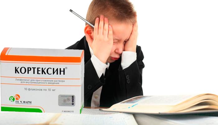 кортексин для головы