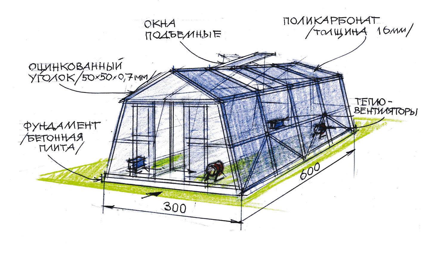 схема вентиляции в теплице